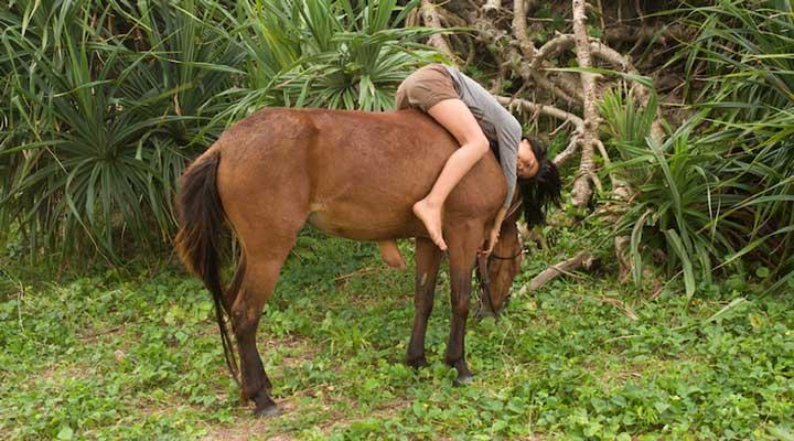 Charlotte-Dumas-Het-paard-in-de-kalebas_fototentoonstelling-Sieboldhuis